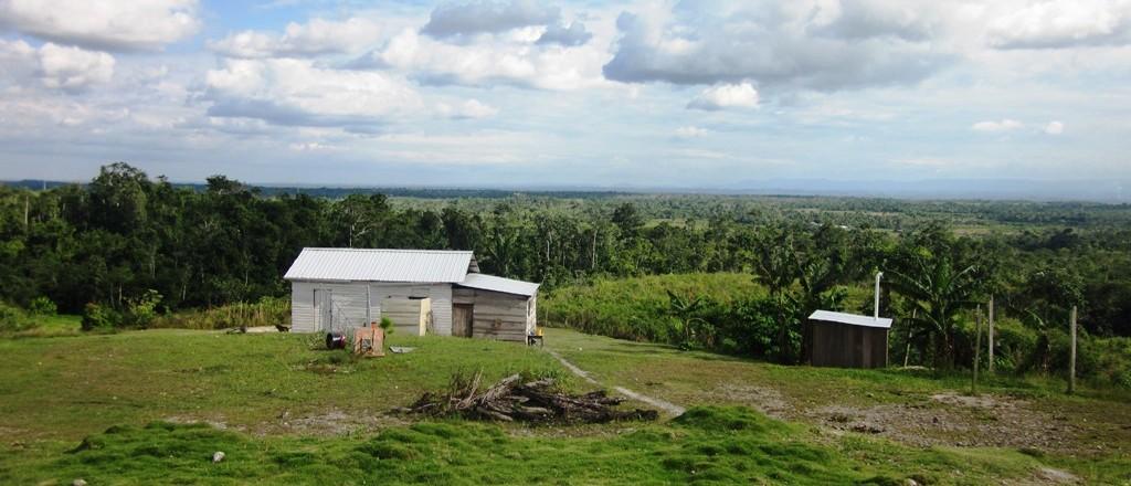 Monkey Island Condos For Sale